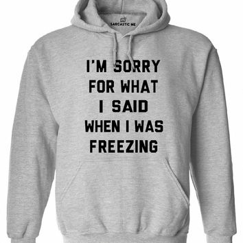 I'm Sorry For What I Said When I Was Freezing Hoodie