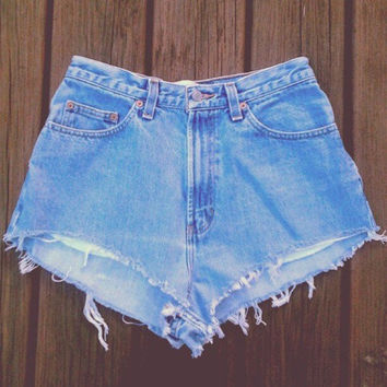 High Waisted Denim Shorts by TheHipstore on Etsy