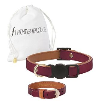 Classic Cat Bordeaux Cat Collar