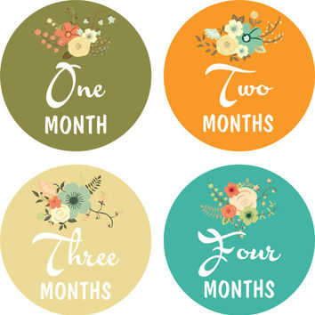 Monthly Baby Milestone Stickers Baby Girl Baby Shower Gift One-Piece Baby Stickers Monthly Baby Stickers Baby Month Sticker Flowers Blossoms