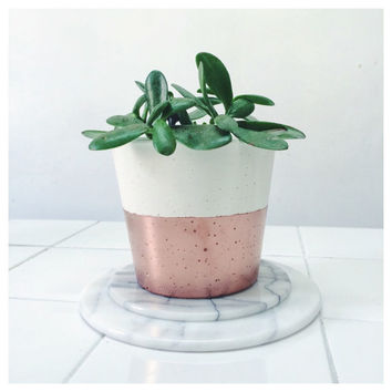 Medium concrete copper dipped planter for succulents, cactus or houseplants in porcelain cement