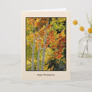 Happy Thanksgiving Autumn Aspens, Fall Colors Card