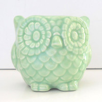 Ceramic Mini Owl Desk Planter Vintage Design in Celadon