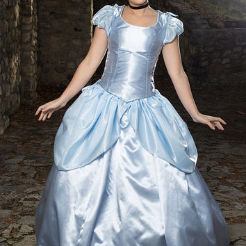 Cinderella Adult Costume  - Adjustable and Washable