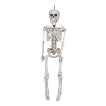 "36"" Halloween Hanging Skeleton"