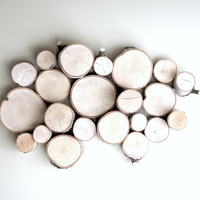 white birch forest topography - organic wood wall art - made to order