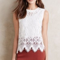 Deletta Scalloped Lace Tank
