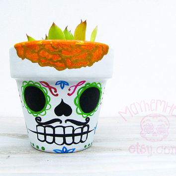 Sugar Skull Planter with Succulent Plant- Dia de los Muertos Day of the Dead Tattoo Terra Cotta