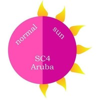 Revel Nail - Dip Powder Sun Color Aruba 2 oz - #SC4C