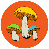 Psychedelic Mushrooms 70s Style Wall Decal