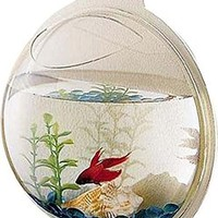 "Wall Mounted Fish Bowl Bubble for Goldfish & Beta or Hanging Terrarium with Exclusive ""Lets Get Started Guide"" - 10 in Diameter - Acrylic - by Stanton Collections™"