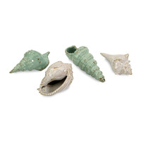 Sea Shells Collection - Set of 4