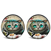 1 Pair New Gauged Cat Earring Screw-fit Ear Plugs and Tunnels Expander Piercing Stretcher Body Jewelry