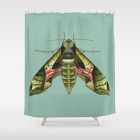 Pandorus Sphinx Moth Shower Curtain by Kate Halpin