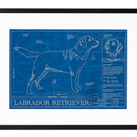 DOG BLUEPRINTS | Framed Posters, Wall Art, Golden Retriever, Dachshund | UncommonGoods