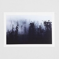 Troy Moth Forest Art Print - Urban Outfitters