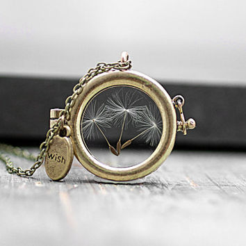 Window Locket Necklace with real dried DANDELION SEEDS. Bronze / antique gold colored. Spring Jewelry for her.