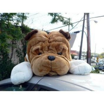 Giant Stuffed Bulldog 36 Inches Huge Soft Big Plush Dog 3 Foot New