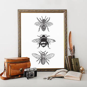 Bee Decor, printable, bee decorations, bee print, bee wall art, bee wall decor, art prints, wall art prints, vintage, wall art printable