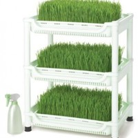 Tribest Sproutman SM-350 Wheatgrass Grower