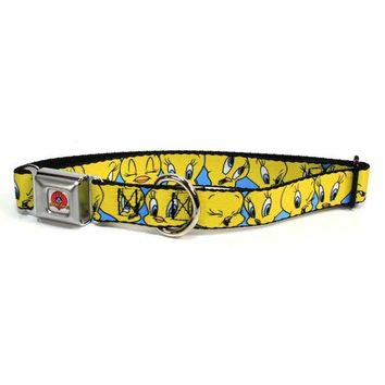 CREYCY8 Looney Tunes - Tweety Bird Expressions Dog Collar