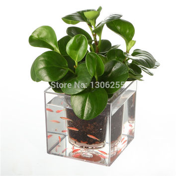 Free Shipping 1pcs Creative Clear Tube Plant Pot / Flower Pot Self-Watering Planter Fish Tank for Home Office Desk Decoration