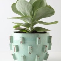 Blocked Planter - Anthropologie.com