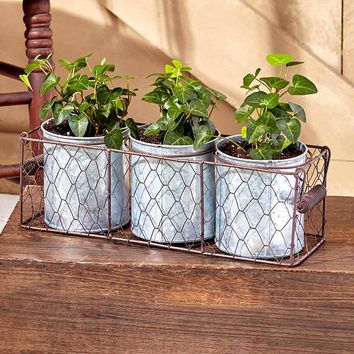 Galvanized Planters in Wire Basket Indoor/Outdoor Single Double Triple Vintage