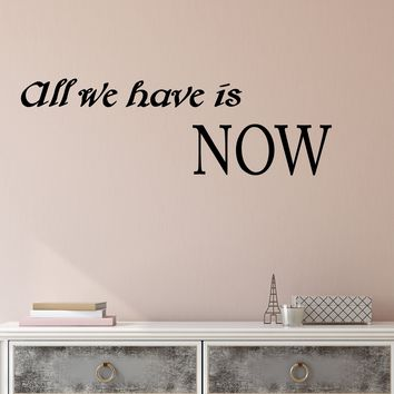 Vinyl Wall Decal Stickers Motivation Quote Words All We Have Is Now Inspiring Letters 2810ig (22.5 in x 7 in)