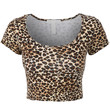 Womens Fitted Short Sleeve Crop Top with Stretch