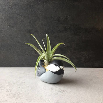 Chickadee, Mini Animal Planter, Air Plant Holder, Cute Desk Accessories, Home Office Decor, Cubicle Decor, Housewarming Gifts, Animal Totem