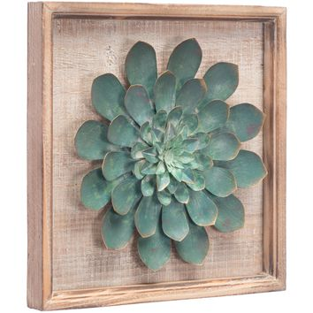 Green Star Succulent Wall Decor Dist.