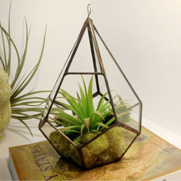 Large Hanging Terrarium, Glass Terrarium, Geometric Teardrop Shape Plant holder.