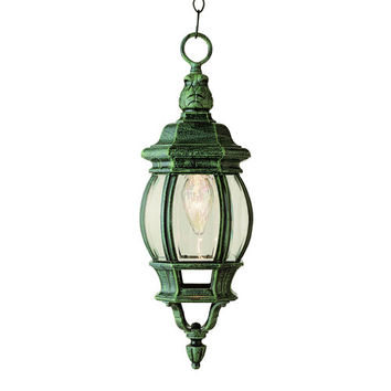 Trans Globe Lighting 4065VG Rochefort 20 Inch Outdoor Hanging Lantern -Verde Green