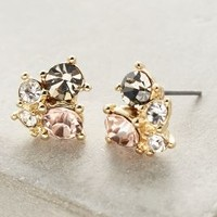 Sonata Cluster Posts by Anthropologie in Floral Size: One Size Earrings