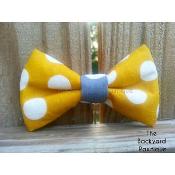 Yellow and grey polka dot dog bowtie, pet bowtie, bowtie collar slider, grey and yellow  pet accessories,  modern accessories for dogs
