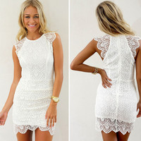 Lace  Embroidery Sleeveless Bodycon Dress