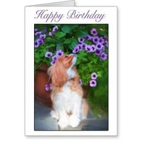 Happy Birthday Smelling Flowers King Charles Dog Greeting Card