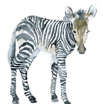 Zebra Watercolor