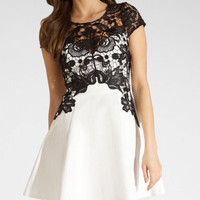 White Lace Sleeve Patchwork Skater Dress