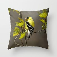 Goldfinch in Song Throw Pillow by Christina Rollo | Society6