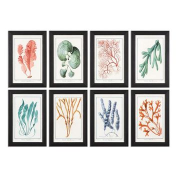 Uttermost Colorful Algae 8-Piece Wall Art Set | Nordstrom
