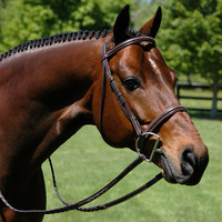 Heritage Padded Fancy Stitch Bridle - 1068100