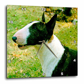 3dRose LLC Miniature Bull Terrier Wall Clock, 10 by 10-Inch