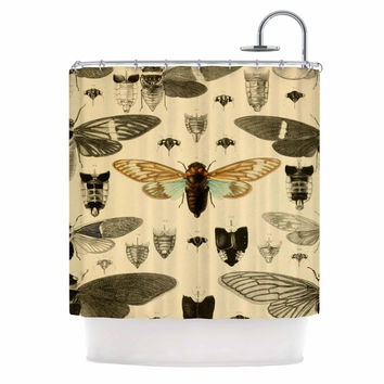 "Suzanne Carter ""Vintage Cicada"" Bugs Pattern Shower Curtain"