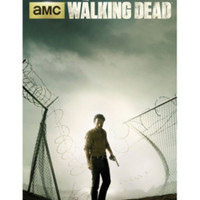 The Walking Dead Rick Prison Fence Poster