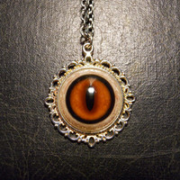 Tarnished Vixen Red Fox Eye Taxidermy Glass Eye Necklace