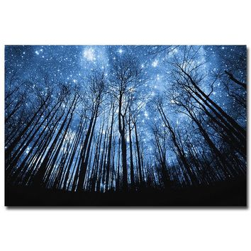 MQ2525 The Winter Forest Starry Night Nature Star Sky Tree Hot Art Poster Top Silk Canvas Home Decor Picture Wall Printings