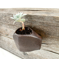 Faceted Volcanic Brown Wall-hanging Planter