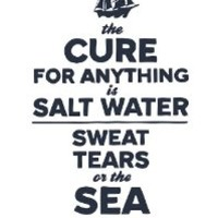 """The Cure For Anything is Salt Water"" Wall Quotes Canvas Banner"